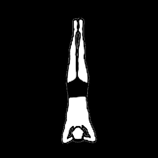 Asana-Headstand-Ashram-de-Yoga-Sivananda-Yoga-France