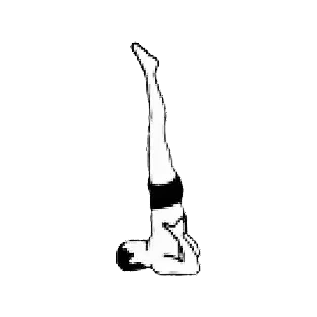 "<div style=""color: #373737;"">2. SHOULDERSTAND</div>"