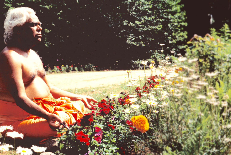 Swami Vishnudevananda Raja Yoga Swami Sivananda Bhakti Yoga | Ashram de Yoga Sivananda | Yoga | France