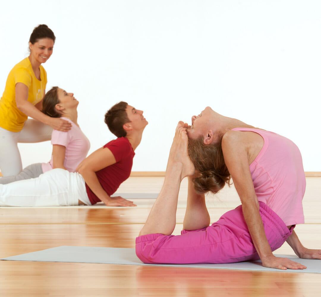 The Major Asana Cycles | Ashram de Yoga Sivananda | Yoga | France