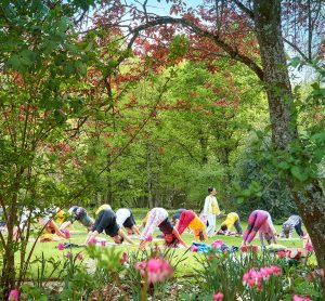 Yoga for All: how to find Unity in Diversity